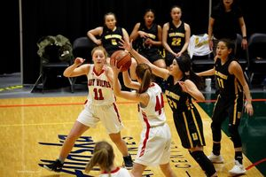 Lady Wolves come home after two narrow losses at state